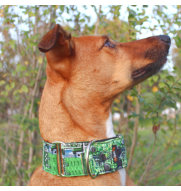 MARTINGALE CHIP dog collar
