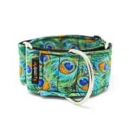 COLLAR MARTINGALE PEACOCK